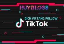 Dịch vụ tăng follow Tiktok Việt Nam